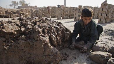 Photo of В ООН дали официальный старт Международному году искоренения детского труда