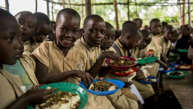 Photo of COVID-19: Prioritize school meals in plans to reopen classrooms, UN report says