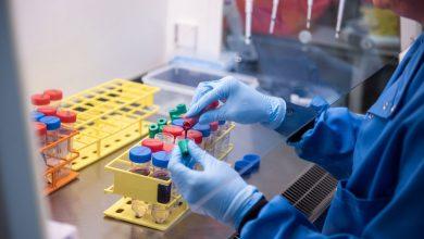 Photo of COVID-19 в Европе: распространение мутаций, надежда на вакцины и соблюдение уже известных мер предосторожности