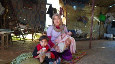 Photo of Комиссия ООН: стороны сирийского конфликта воспользовались бездействием международного сообщества
