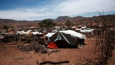 Photo of Sudan: 250 killed, over 100,000 displaced as violence surges in Darfur