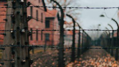 Photo of «Борьба с забвением»: в ООН почтили память жертв Холокоста