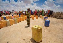 Photo of Poor seasonal rains threatening 'foundations' of tens of thousands of Somali livelihoods