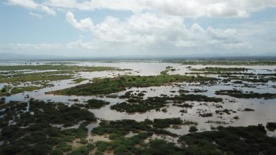 Photo of Tropical Cyclone Idai affects 1.5 million across Mozambique and Malawi, as UN ramps up response