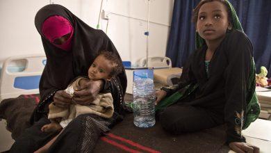 Photo of UN envoy highlights diplomatic unity, as key to help end Yemen war