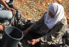Photo of Settler violence is rising in Occupied Palestinian Territory, warn experts