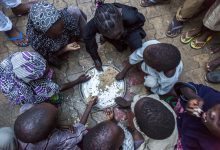 Photo of Soaring food prices, conflicts driving hunger, rise across West and Central Africa: WFP