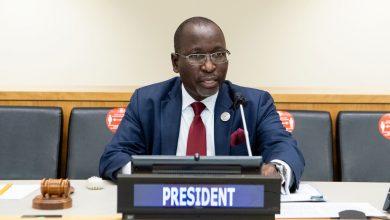 Photo of Новым председателем ЭКОСОС стал представитель Ботсваны