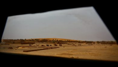 Photo of Rights experts condemn 'dramatic rise' in attacks on so-called slaves in Mali
