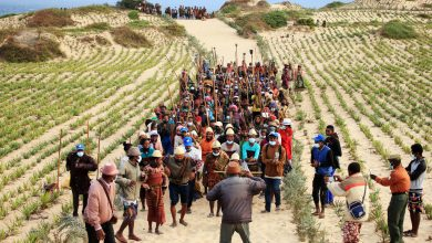 Photo of Climate change and hunger in Madagascar: a UN Resident Coordinator blog