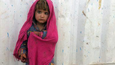 Photo of Afghanistan: UN agencies sound alarm over emergency aid supply logjam
