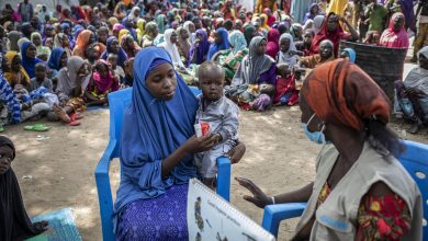Photo of Displaced in northeast Nigeria 'knocking on door of starvation': WFP