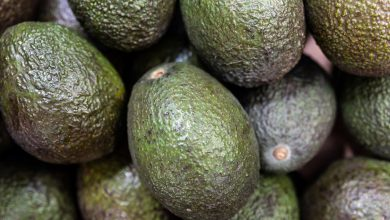 Photo of Food Heroes: Ethiopian avocado farmer's 'transformational' crop